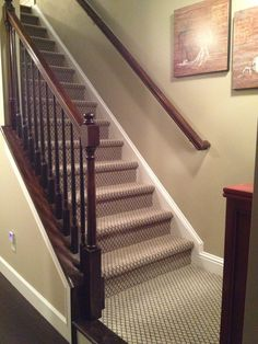 Discount Carpet Runners For Stairs Key: 7029688159 Carpet Staircase, Basement Carpet, Hallway Carpet Runners, Cheap Carpet Runners, Stair Runners, Wall Carpet, Diy Carpet, Carpet Ideas, Where To Buy Carpet