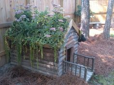 An old dog house planter. This is like little house on the prairie living roof dog house style! My fave so far. Landscaping Austin, Landscape Timbers, Cool Dog Houses, Chicken Coop Designs, Chicken Coops, Living Roofs, Niches, Dog Rooms, Distressed Painting