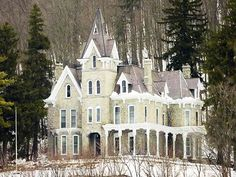 Victorian beauty sitting on a hill top surrounded by white forest.
