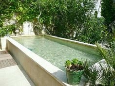42 Ideas house design ideas exterior small for 2019 Garden Swimming Pool, Swiming Pool, Small Swimming Pools, Small Backyard Pools, Small Pools, Swimming Pool Designs, Lap Pools, Indoor Pools, Pool Decks