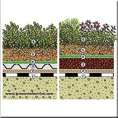 Telhado verde- tipos e implementação | Arquitetura e Sustentabilidade