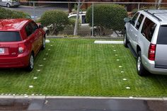 Drivable Grass is our newest addition to the Super-Sod family. It's a permeable paver for growing a lawn outside the garden. Read all about it here: http://www.supersod.com/drivable-grass.html