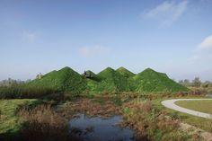 studio marco vermeulen biesbosch museumeiland freshwater tidal park the netherlands designboom