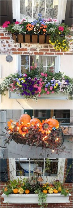 New Exterior Window Design Ideas Flower Boxes Ideas Fall Window Boxes, Window Box Flowers, Window Ideas, Fall Flower Boxes, Door Ideas, Porch Decorating, Decorating Your Home, Window Planter Boxes, Garden Windows