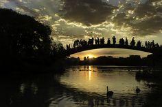 The sunset by Roberto Epifänio on 500px