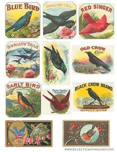 NEW: Free Vintage Cigar Label Graphics