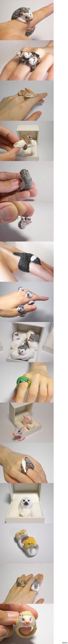 Еж - кольцо Художник из Японии Дзиро Миура делает смешные, тонко выполненные ювелирные украшения из полимерной глины. Изделия очень популярн...