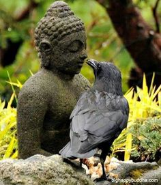 My spirit guide conferring with Buddha, I'm sure they have quite a bit to say to each other!  :)