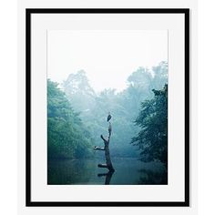 Offset for west elm Print - Ginganga River by Lauryn Ishak #westelm