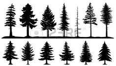 silhouette hands: conifer tree silhouettes on the white background Illustration