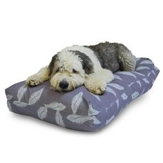 The Retreat wellness bed is a superbly comfortable new dog bed range from Danish Design Dog Beds. The Duvet has an inner cover that is made with easy-care water-resistant fabric to help keep the duvet clean and fresh. Duvet Bedding, Grey Bedding, Duck Egg Duvet Cover, Designer Dog Beds, Good Sleep, Danish Design, Memory Foam, Your Dog, Duvet Covers