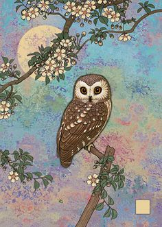 Moonlit Owl by Jane Crowther for Bug Art cards