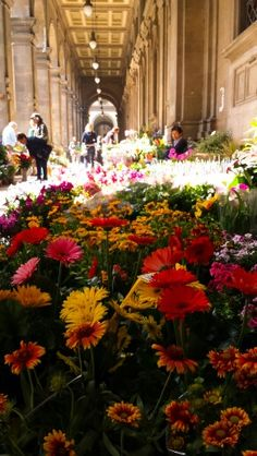 Flower market in Florence! Every thursday in Republic Square #florence
