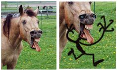 And this horse is just horrible. | 18 Hilarious Artist Re-Interpretations Of Weird Things They See