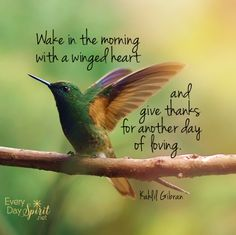 Wake in the Morning with a Winged Heart and give Thanks for another day of Loving ⊰♡⊱ Kahlil Gibran