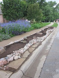 Ideas/plant list for the strip at the end of the driveway.