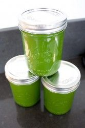 Juicing-for-Dummies-Homemade-Juice-Cleanse-17