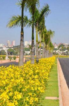 SOBLOCO_ESPAÇO CERÂMICA 08 - São Caetano do Sul