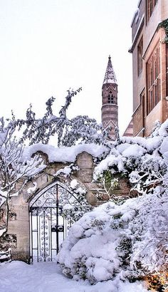 Balliol College covered in snow (Oxford University, Oxford, England) Oxford England, London England, Balliol College, Winter Scenery, England And Scotland, Snowy Day, Snow Scenes, Winter Beauty, Winter Garden