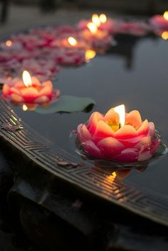 Lotus Candles floating in a fountain outside or alternatively as part of the centerpiece decoration Enjoying The Small Things, Floating Candles, Pool Candles, Floating Lights, Floating Flowers, Candle Lanterns, Candle Lighting, Candle Art, Candleholders