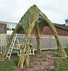 Living willow sculpture for seating area?