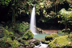 jungle waterfall - Google Search