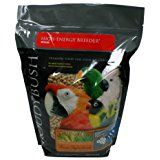 Roudybush High Energy Bird Food, 10-Pound, Medium * Find out more about the great product at the image link.