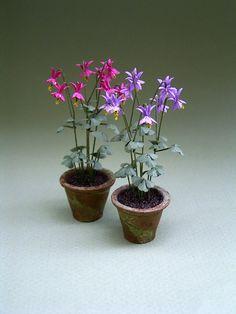 The Miniature Garden: Weeds and Wild Flowers