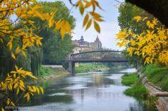 Autumn in Timisoara, Romania - photo by Razvan Vitionescu River, Timisoara Romania, Outdoor, Autumn, Sweet, Outdoors, Candy, Fall Season, Fall