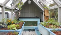 aquaponics- I wouldn't need glass to see the fish and I'd put solar panels on the roof to power the pumps.