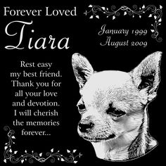 Personalized Chihuahua Dog Pet Memorial 12'x12' Engraved Black Granite Grave Marker Head Stone Plaque TIA1 ** Don't get left behind, see this great dog product : Dog Memorials