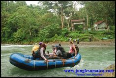 Jungle Sumatra | Bukit Lawang | Welcome to Sumatra, North Sumatera, Indonesia