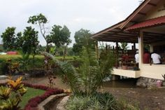 Pesona Wisata Bogor