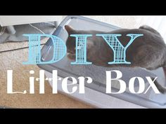 Kelli's Life Hacks: DIY Litter Box for under $10 - YouTube