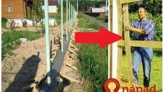 Zabudnite na ťažké murované ploty za drahé peniaze: Perfektné nápady na ploty, ktoré si poskladáte sami, vyzerajú skvele a zakryjú aj staré pletivo! Backyard, Good Things, Outdoor Decor, Gardening, Ideas, Stuff Stuff, Patio, Lawn And Garden, Backyards