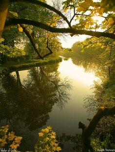 "seasonsofwinterberry: "" Water of Leith at Weir ~ Fords Road, Saughton, Scotland by Ralph Stewart """