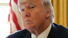 Trump rips court for 'disgraceful decision' by cutting law blog that actually agrees with decision