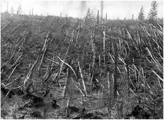1927-es tájkép a robbanás helyszínéről. Majd húsz év múltán is holdbéli világra emlékeztetett a vidék Forrás: Wikimedia Commons