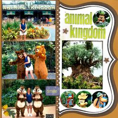 Animal Kingdom - Scrapjazz.com
