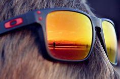 Ha ha ,,Cheap Oakley Sunglasses