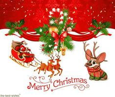 Looking for Merry Christmas pictures wish a Merry Christmas with these best Christmas wishes hd images, quotes, and greetings of Merry Christmas. Best Merry Christmas Wishes, Merry Christmas Pictures, Merry Christmas Wallpaper, Merry Xmas, Christmas Fun, Christmas Ornaments, Love Quotes Photos, Make It Yourself, Holiday Decor