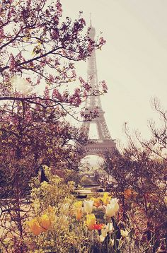 Paris in the springtime. Would love to go back one day with my love!