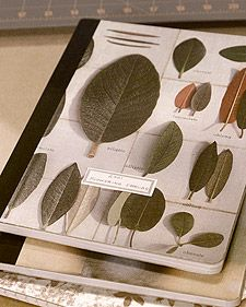 How to make your own customized nature journal from a simple composition book - I'm going to try this!