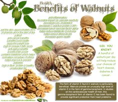 Health Benefits of Walnuts 10-15 walnut halves a day are crucial to good artery health.  By making it your mid morning and afternoon snack and having 5-6 at a time followed by 4 oz of Welch's pure grape juice...WOW  ... double whammy