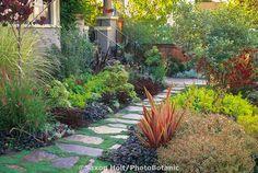 Slate pathway in front yard entry garden. Suzanne Arca design