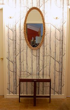 forest wallpaper accent wall