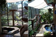 catio showcase is a wonderful site with lots of ideas for outdoor enclosures for your cat.