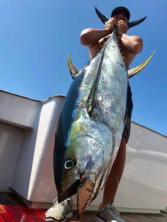 Pesca de atún en el Pacífico costarricense
