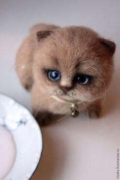 котенок Персик - котенок,кот,кошка,валяный котенок,100% шерсть