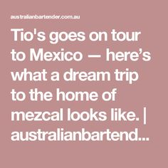 Tio's goes on tour to Mexico — here's what a dream trip tothe home of mezcal looks like. | australianbartender.com.au
